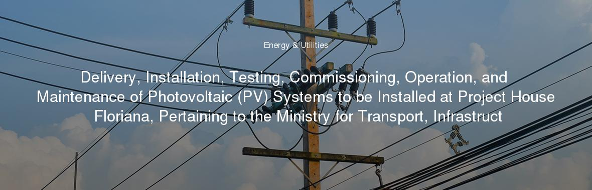 Delivery Installation Testing Commissioning Operation And