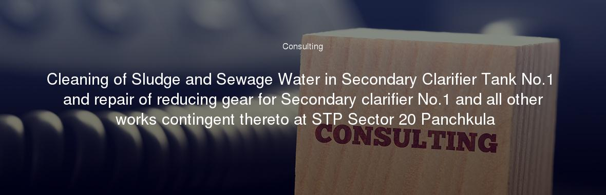 Cleaning of Sludge and Sewage Water in Secondary Clarifier