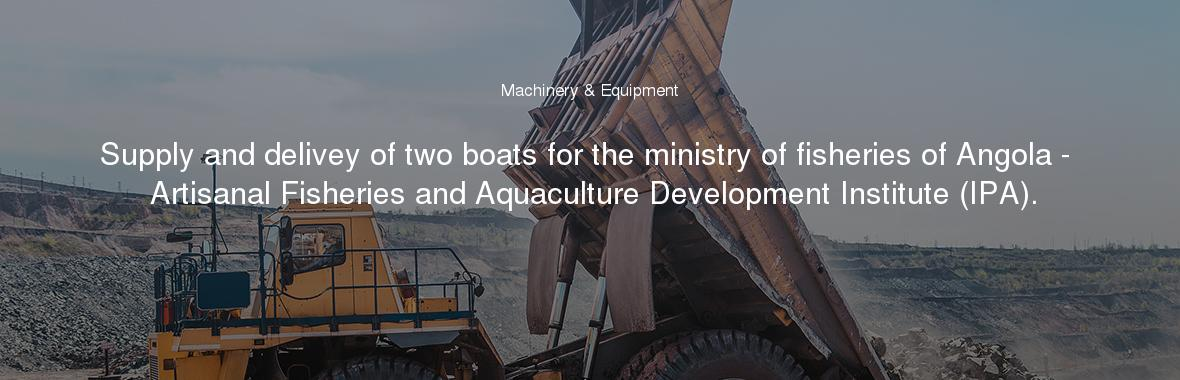 Supply and delivey of two boats for the ministry of fisheries of Angola - Artisanal Fisheries and Aquaculture Development Institute (IPA).