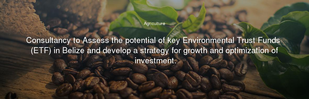 Consultancy to Assess the potential of key Environmental Trust Funds (ETF) in Belize and develop a strategy for growth and optimization of investment.