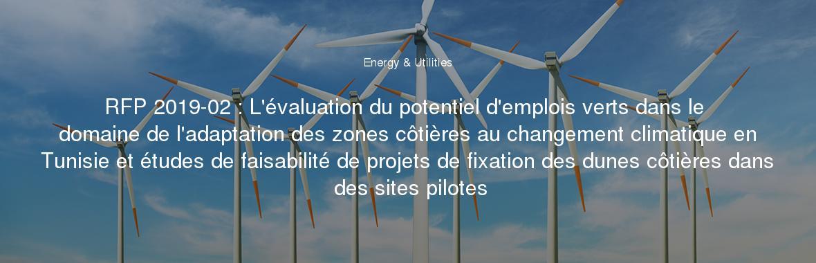 RFP 2019-02 : L'évaluation du potentiel d'emplois verts dans le domaine de l'adaptation des zones côtières au changement climatique en Tunisie et études de faisabilité de projets de fixation des dunes côtières dans des sites pilotes